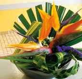Art Floral WEB