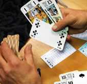 Senior Tarot WEB